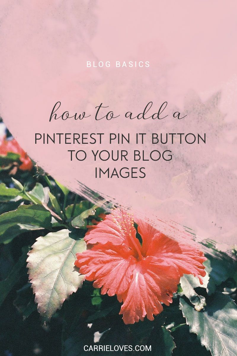 How to add a Pinterest pin it button - Carrie Loves Blog