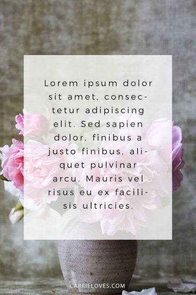 8 Lorem Ipsum Alternatives