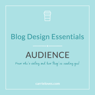 know who your blog audience is