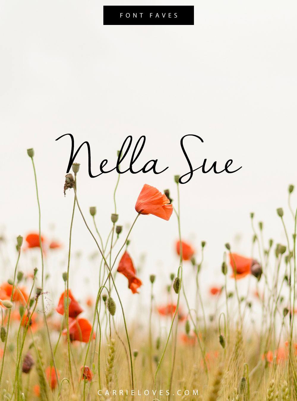 Font Faves Nella Sue - Carrie Loves Blog