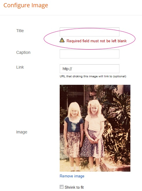 how to image gadget in Blogger without required title 1