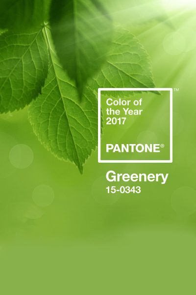 Pantone Color of the Year 2017 Greenery - Carrie Loves Blog
